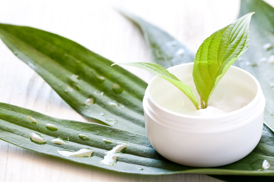 Szkolenie zakażenia od kosmetyków - Codziennik Kosmetyczny